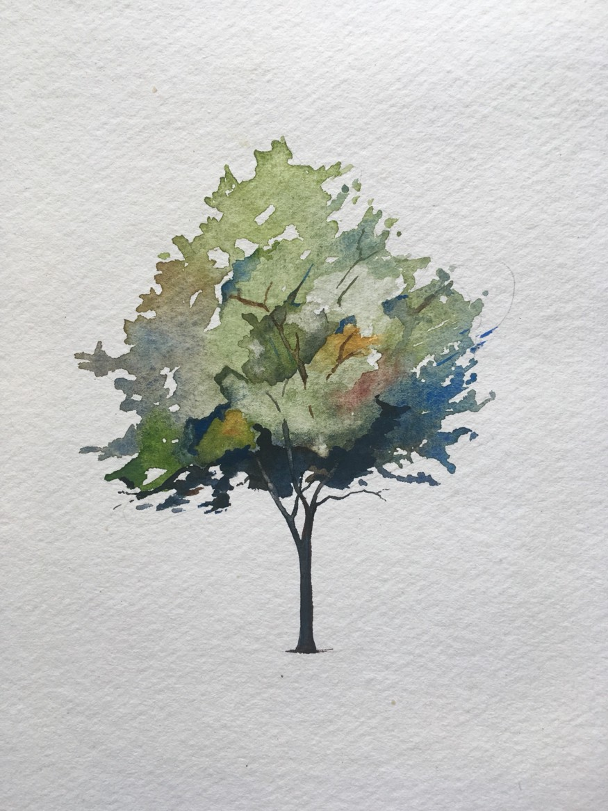 How to paint a tree in watercolours final painting