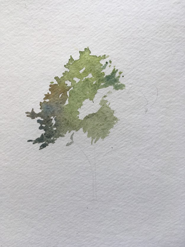 How to paint a tree in watercolours step 2
